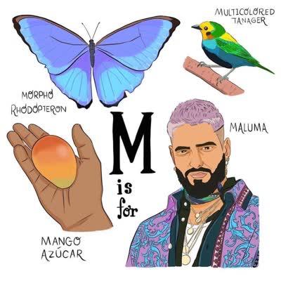 abecedario colombiano m de mango azucar morpho rhodopteron maluma multicolored tanager