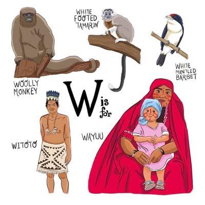 abecedario colombiano w de wayu witoto white monkey