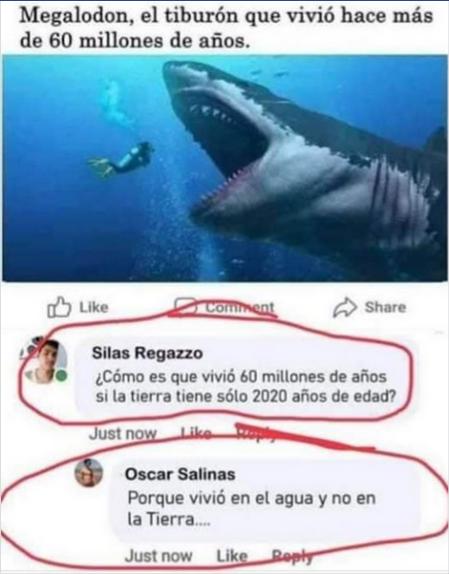 el tiburon megalodon vivio en el agua