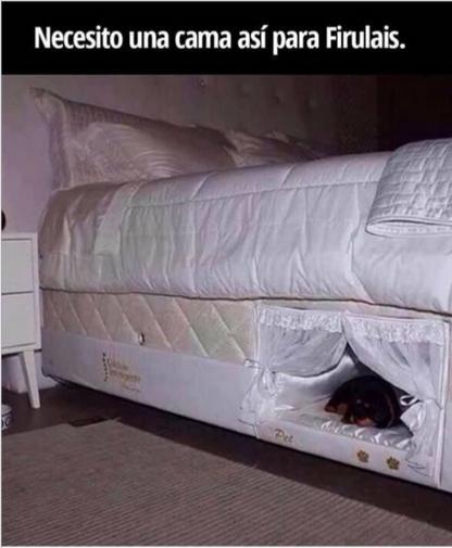 ingeniosa cama para perro
