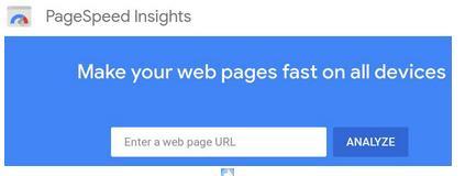 pagespeed insights evalúa la velocidad de carga de un website